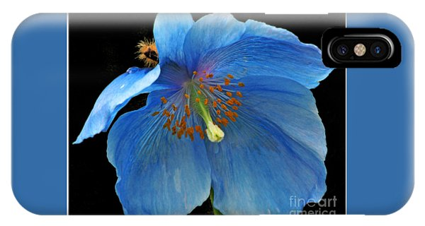 Blue Poppy On Black IPhone Case