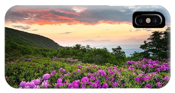 Blue Ridge Parkway Sunset - Craggy Gardens Rhododendron Bloom IPhone Case