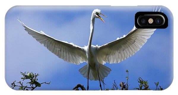 Blue Sky Landing IPhone Case