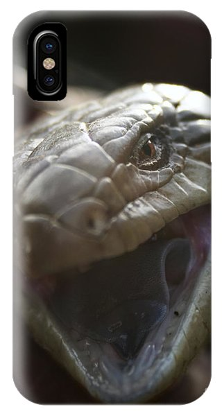 Blue Tongue Lizard IPhone Case