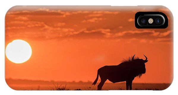 Blue Wildebeest At Dusk Phone Case by Tony Camacho/science Photo Library