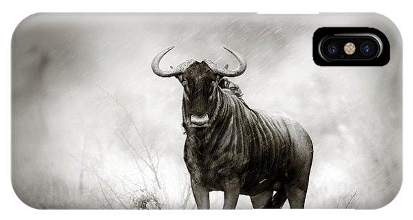 Blue Wildebeest In Rainstorm IPhone Case