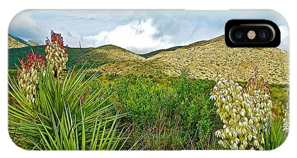 Blue Yucca And Chisos Mountains In Big Bend National Park-texas IPhone Case