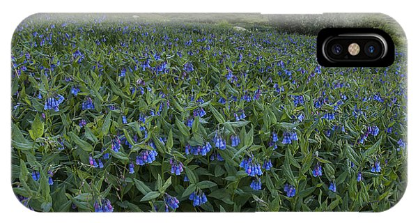 Bluebell Bounty IPhone Case