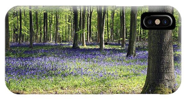 Bluebell Wood Uk IPhone Case