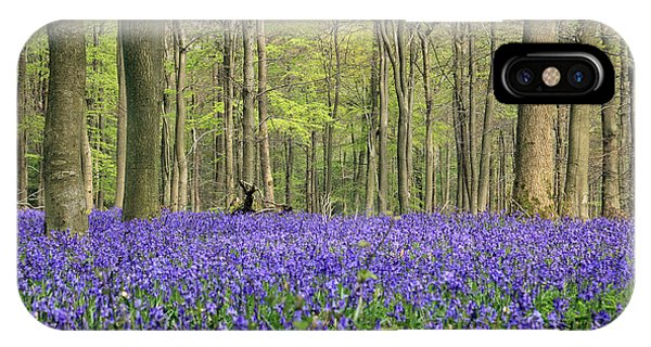 Bluebells Surrey England Uk IPhone Case