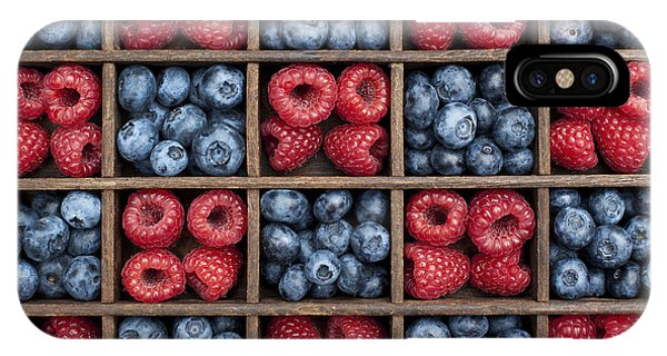 Blueberry iPhone Case - Blueberries And Raspberries  by Tim Gainey