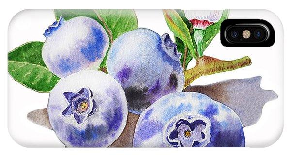 Blueberry iPhone Case - Artz Vitamins The Blueberries by Irina Sztukowski
