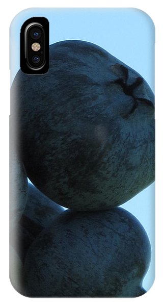 Blueberry Boulder IPhone Case
