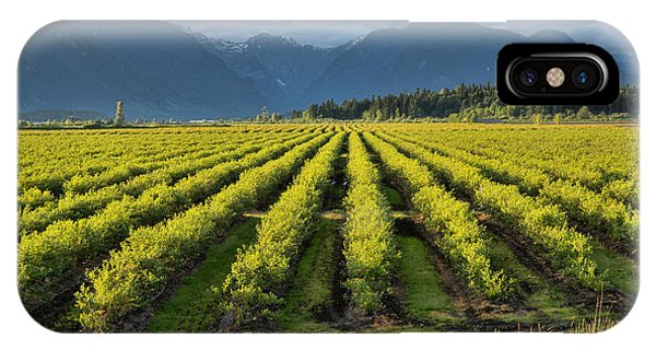 Wheeler Farm iPhone Case - Blueberry Fields by James Wheeler