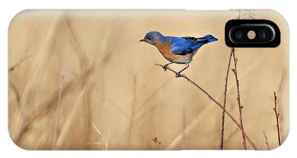 Bluebird Meadow IPhone Case