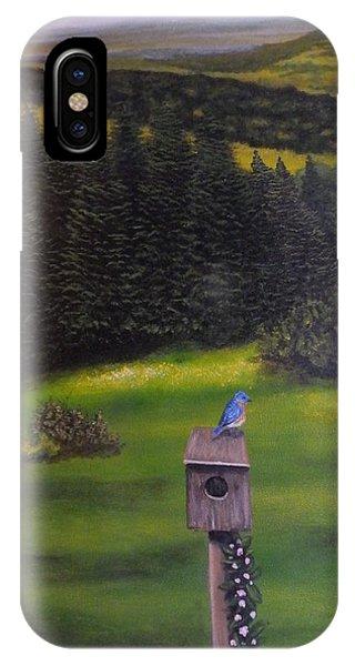 Bluebird On A Birdhouse IPhone Case