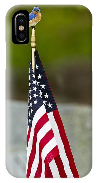 Bluebird Perched On American Flag IPhone Case