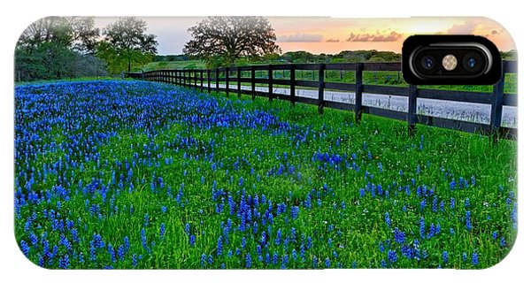 Bluebonnet Fields Forever Brenham Texas IPhone Case