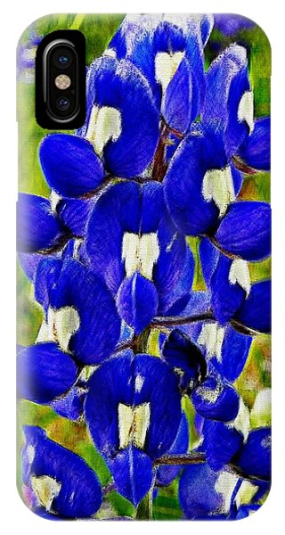 Bluebonnet IPhone Case