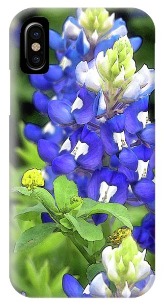 Bluebonnets Blooming IPhone Case