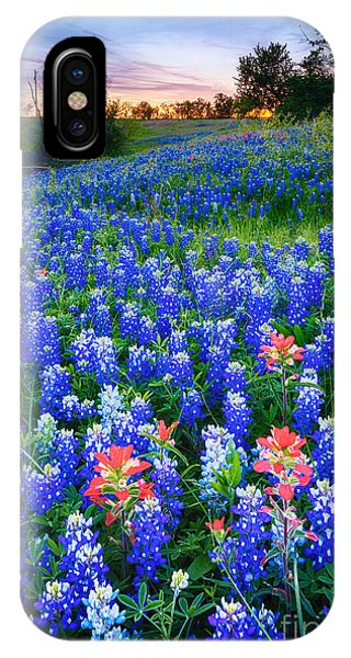 Rural America iPhone Case - Bluebonnets Forever by Inge Johnsson
