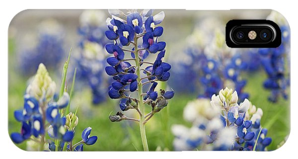 IPhone Case featuring the photograph Bluebonnets by John Maffei