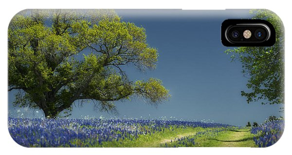 Bluebonnets Road Trees IPhone Case