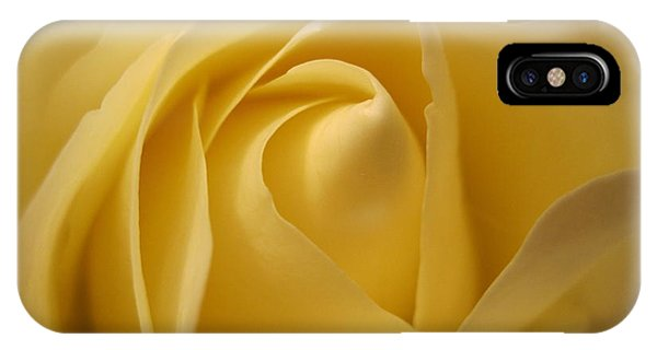 Close Up Floral iPhone Case - Blushing Cream Rose  by Tara  Shalton