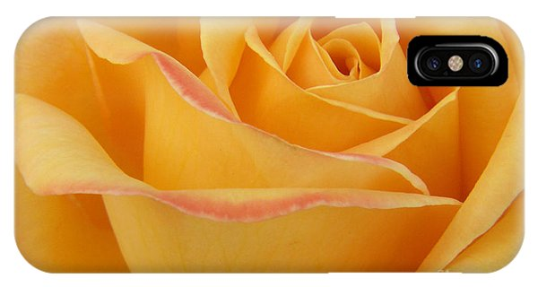 Blushing Yellow Rose IPhone Case