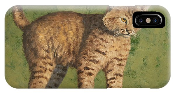Lynx iPhone Case - Bobcat Kitten by Crista Forest