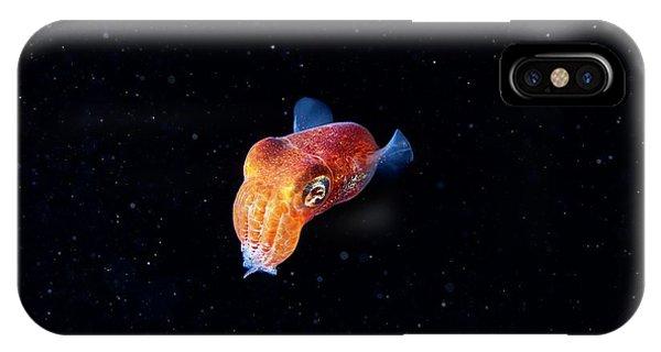 Squid iPhone Case - Bobtail Squid (sepiola Sp.) by Alexander Semenov/science Photo Library