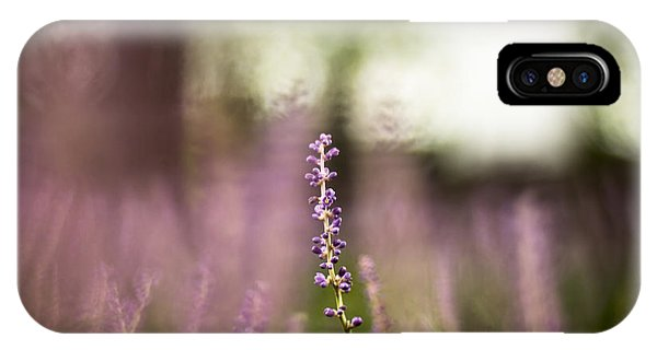 Bokeh With Purple Wildflower IPhone Case