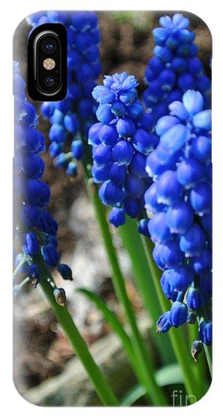 Bonny Blue IPhone Case