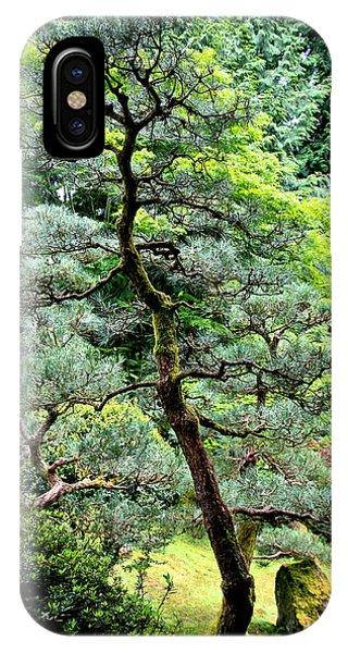 Bonsai Tree IPhone Case