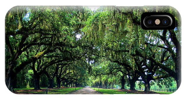 Boone Hall Oak Allee IPhone Case