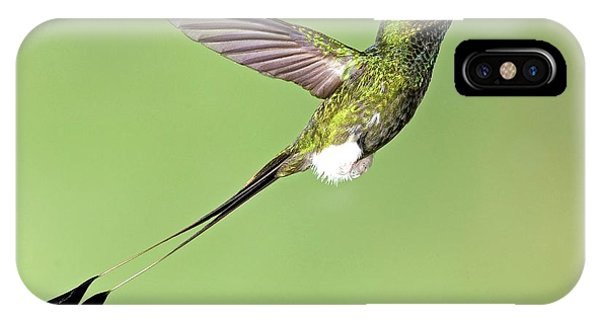 Booted Racket-tail Hummingbird Phone Case by Tony Camacho/science Photo Library