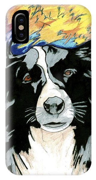 Border Collie IPhone Case