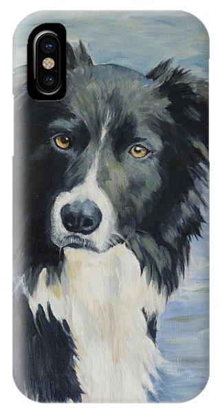 Border Collie Portrait IPhone Case