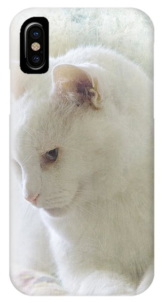 Boris Lazing In The Sun IPhone Case