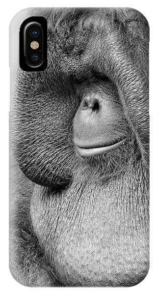 Bornean Orangutan V IPhone Case