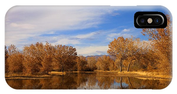 New Leaf iPhone Case - Bosque Del Apache Reflections by Mike  Dawson