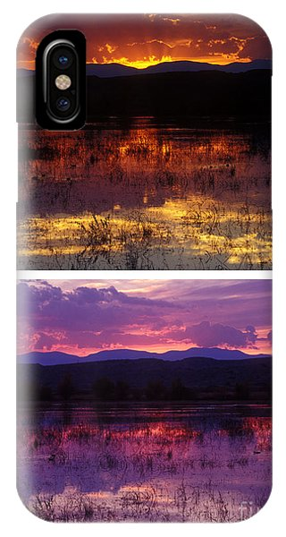 Bosque Sunsets IPhone Case
