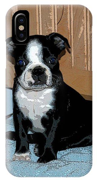 Boston Terrier Art02 IPhone Case
