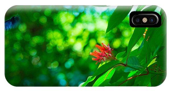Botanical Garden Butterfly IPhone Case
