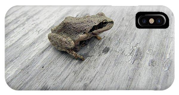 Botanical Gardens Tree Frog IPhone Case