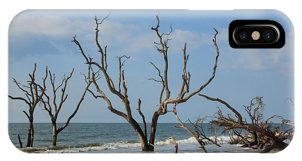 Botany Beach IPhone Case