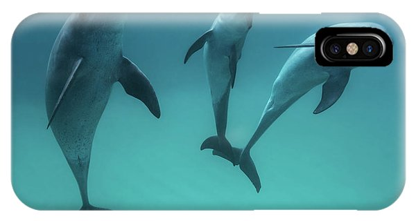 Bottlenose Dolphins Phone Case by Barathieu Gabriel