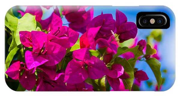 Bougainvillea Phone Case by Mary Ann Tardif