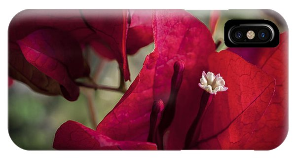 IPhone Case featuring the photograph Bougainvillea by Steven Sparks