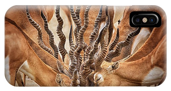 Crowd iPhone Case - Bouqet Of Horns by Sayyed Nayyer Reza
