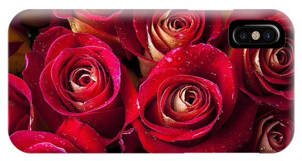 Red Flower iPhone Case - Boutique Roses by Garry Gay