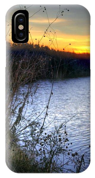 Bramble Pond IPhone Case
