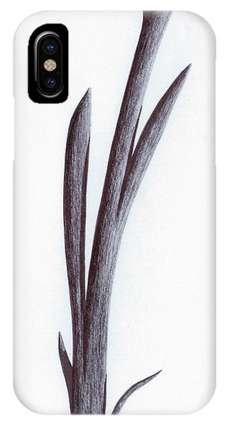 Branch Of A Fragment Of Life IPhone Case