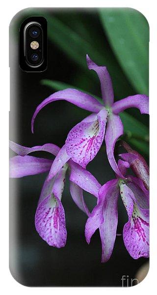 Brassanthe Maikai Orchid IPhone Case